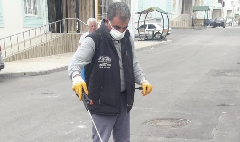 Büyükşehir, toprak piresine karşı ilaçlama seferberliği başlattı